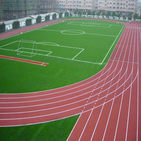 哈尔滨房材料厂家运动草坪