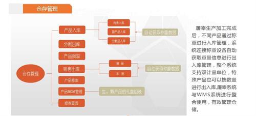 瑞昌生猪加工线动态称重系统厂家