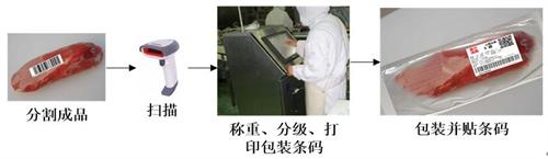 浙江湖州电子屠宰秤公司