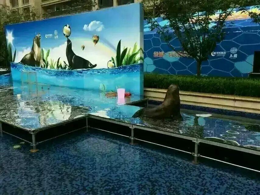 北京市海淀区动物表演出租本地