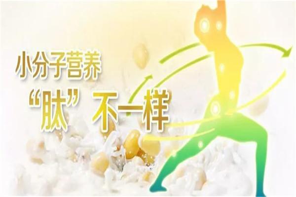 泰州大豆肽蛋白粉厂家品牌