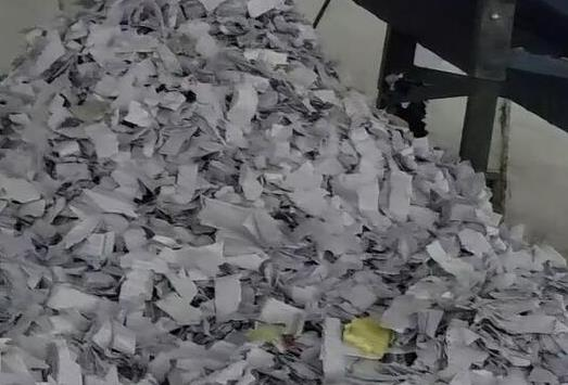 博羅縣從事廢紙處理公司提供價格表