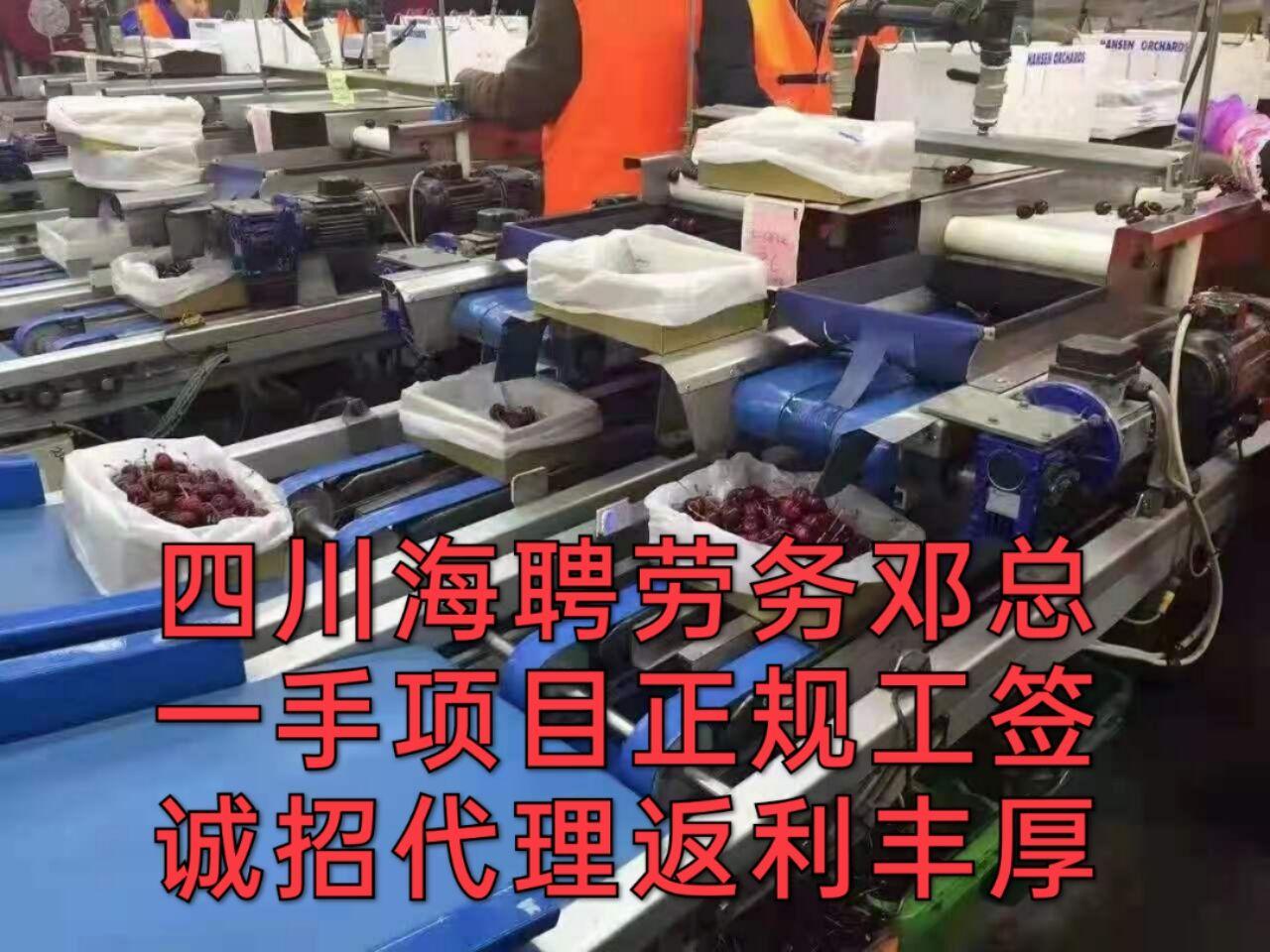 丽江市正规出国海聘钢筋工安全《四川海聘劳务》