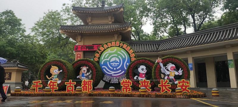 虎年绿雕 春节绿雕 聊城2022年绿雕工程承接(原创设计)
