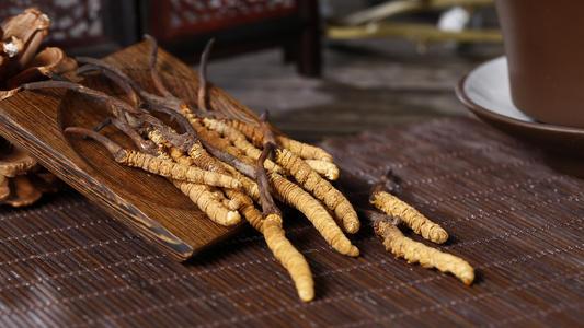 郴州-桂陽回收冬蟲夏草價格目錄 回收冬蟲夏草規格查詢-大量求購
