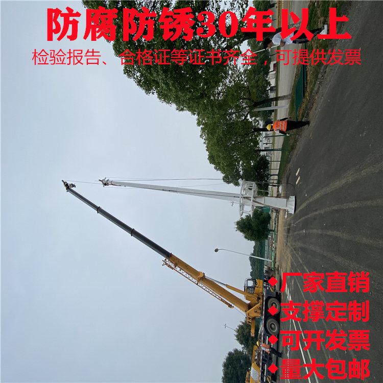 达州市开江县广场噪音污染立杆机场监控杆规模化生产