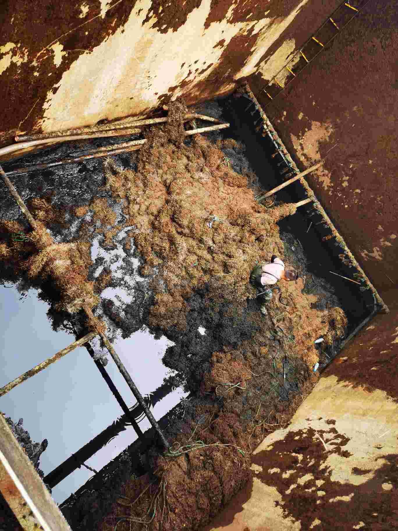 污泥皆可压缩+雨水池清理=宁波市奉化市+服务公司