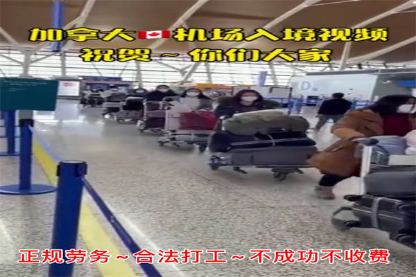 广东省中山市出国劳务靠谱吗-工厂普工、包装工-雇主直招