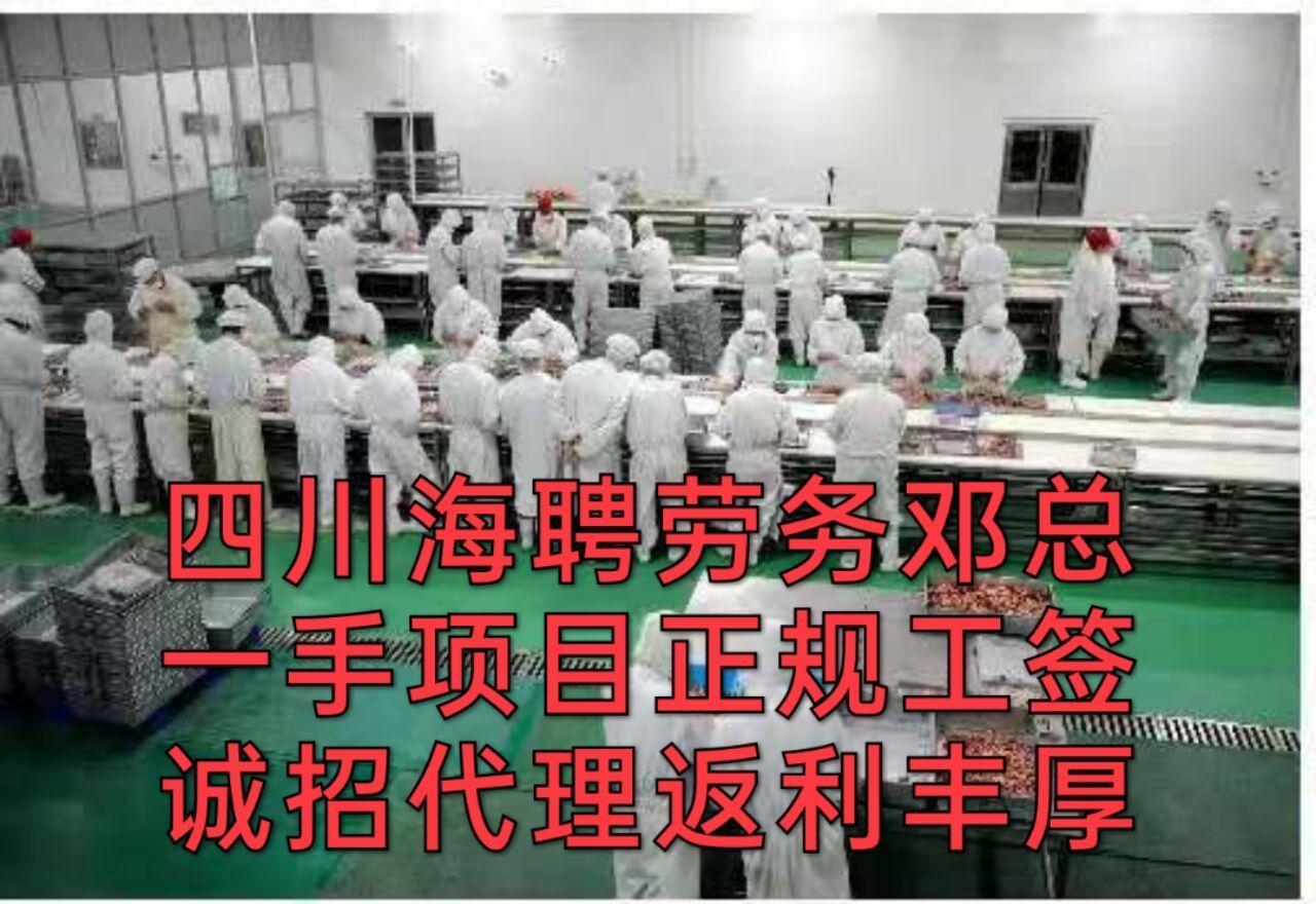 吉林省出国劳务工签油漆工正规工签(出国劳务)