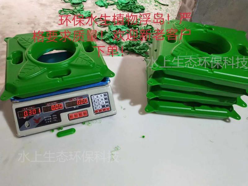 今日推荐两江新区人工浮床技术