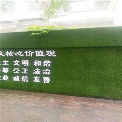 桐城围挡上的草皮