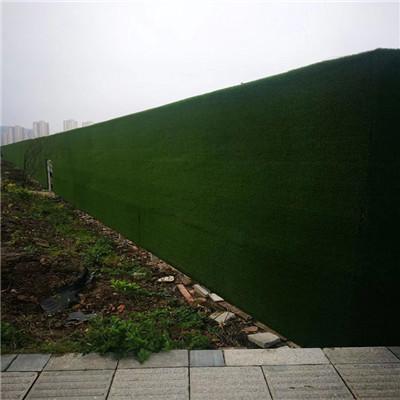 阆中办公室墙面草坪