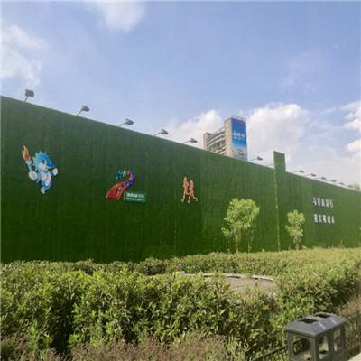 安庆围挡上绿草皮