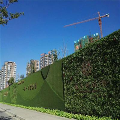 临海足球场人造草坪