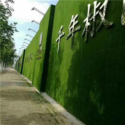 温岭草坪网