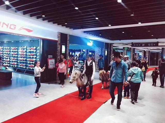 牡丹江市萌宠动物出租|萌宠展览出租——动物租赁表演